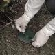 descupinização cupim de solo